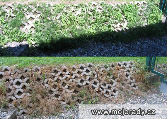 domaci-herbicid